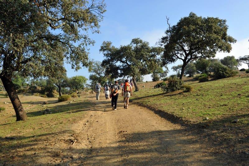 的远足者通过de拉普拉塔走往卡斯蒂尔夫兰科,塞维利亚,安大路西亚,西班牙省的小组  库存图片