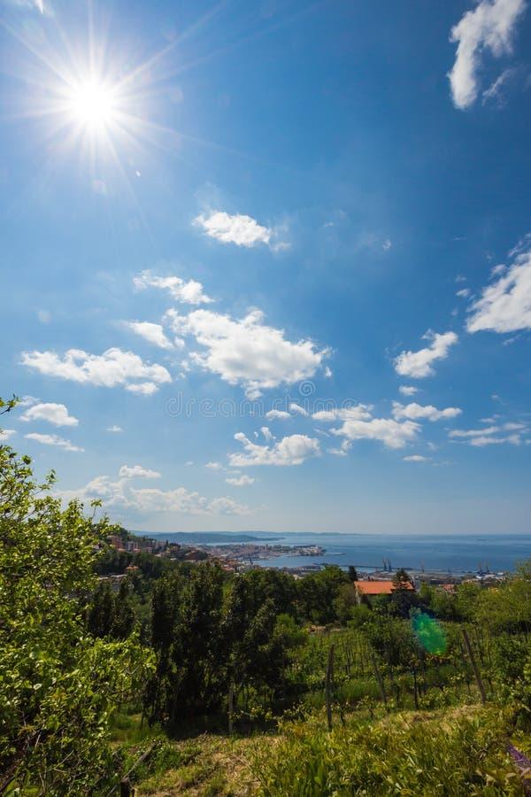 的里雅斯特,意大利海湾  库存照片