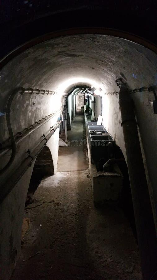 轻的隧道 库存照片
