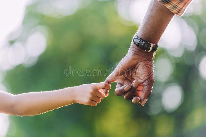 的非裔美国人的祖父握手的播种的观点 免版税库存图片