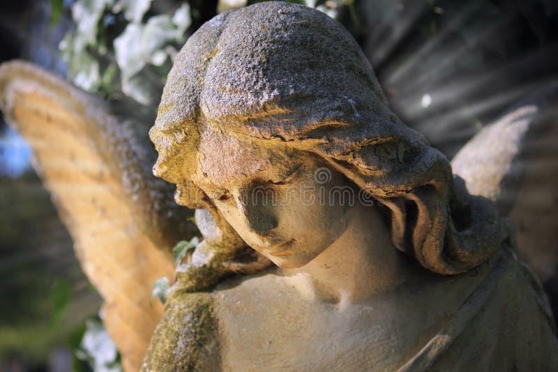 轻的aga照亮的金黄天使雕象庄严看法  库存照片