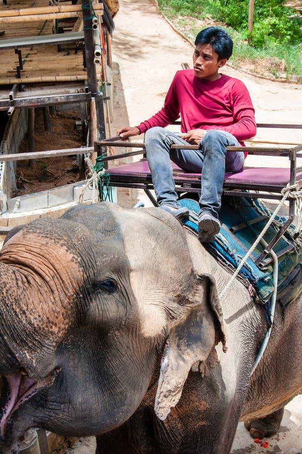 的Mahout和等待他的大象开始与游人的游览 免版税库存图片