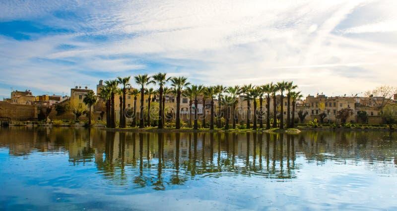 皇家公园在有湖和棕榈的,摩洛哥菲斯 免版税库存图片
