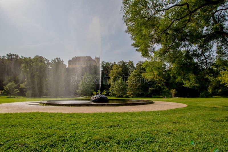 皇家公园Stromovka Krà ¡ lovskà ¡ Obora Stromovka在布拉格,捷克 免版税图库摄影