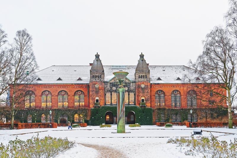 皇家图书馆在哥本哈根在冬天 免版税库存图片