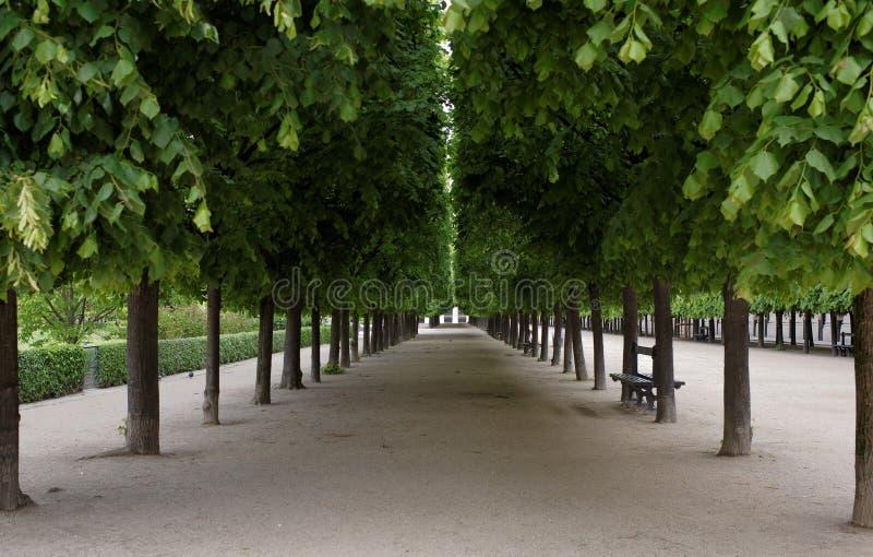 巴黎 皇家的palais Passage du Perron 库存图片