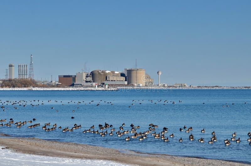 皮克林核电站 库存照片
