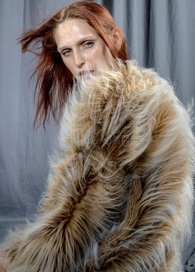 皮大衣迷人的图象的年轻美丽的妇女 库存照片