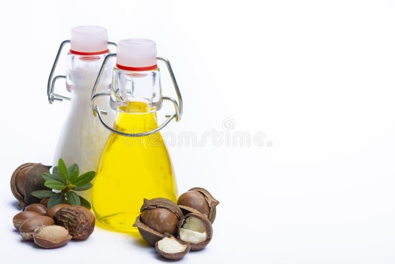 皮肤和护发由在瓶和圆筒芯的灯和马卡达姆坚果的自然圆筒芯的灯或马卡达姆坚果油或者香波做的产品、奶油 库存图片