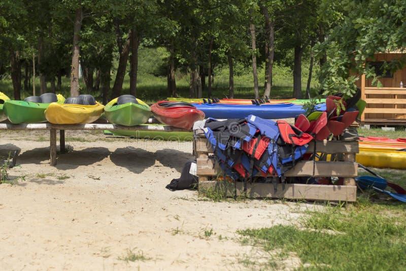 皮船租务 在机架安置的色的皮船在海滩 在一个木容器和桨安排的木棉 免版税库存照片