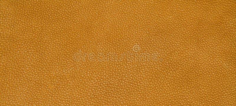 Download 皮革橙色纹理 库存照片. 图片 包括有 抽象, 靠山, 皮肤, 设计, 真正, 材料, 空间, beautifuler - 62530134