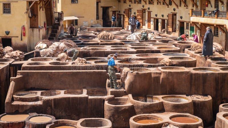 皮革死在一个传统皮革厂在菲斯,摩洛哥 免版税库存照片