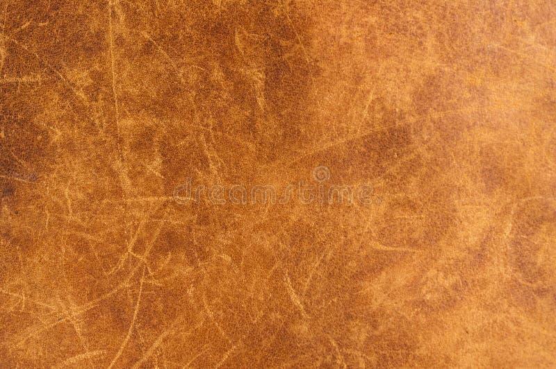 皮革纹理。 免版税库存照片