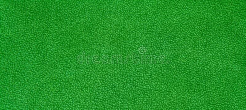 Download 皮革绿色纹理 库存照片. 图片 包括有 靠山, 粗砺, 绿色, 减速火箭, 特写镜头, 反气旋, 表面, 纹理 - 62530014