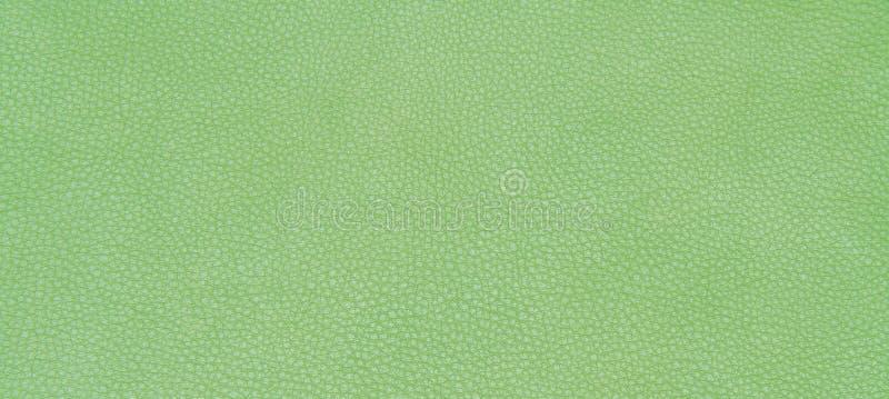Download 皮革绿色纹理 库存照片. 图片 包括有 减速火箭, 抽象, 空白的, 装饰, 背包, 衣物, 反气旋, 布料 - 62530108