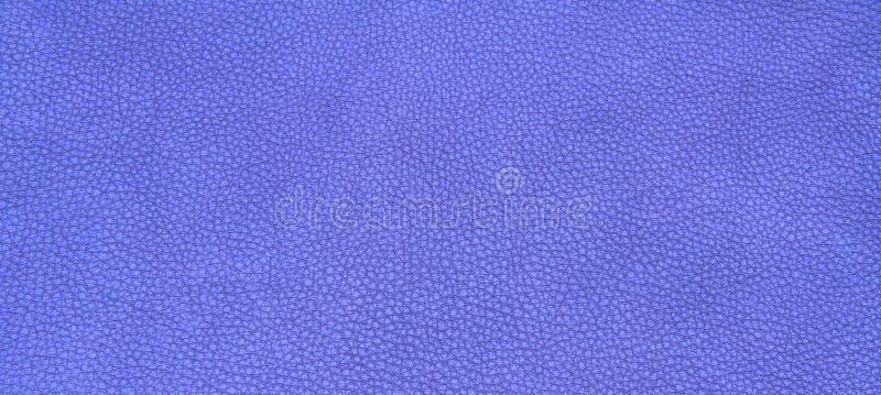 Download 皮革紫色纹理 库存照片. 图片 包括有 颜色, beautifuler, 背包, 皮肤, 纹理, 紫色, 表面 - 62531912