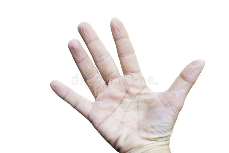 皱痕少妇手指 库存图片