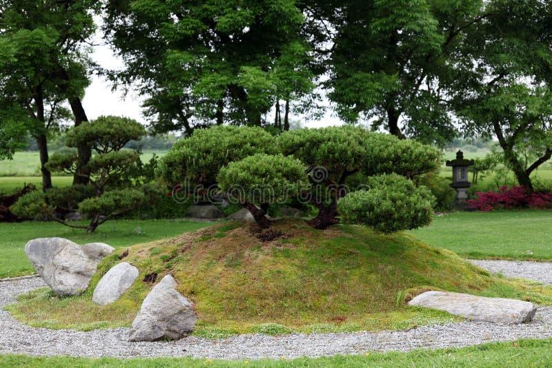 盆景中国庭院石头 库存照片