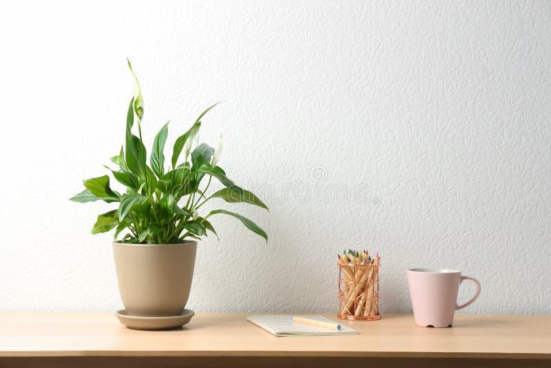 盆的和平百合植物、杯子和笔记本在木桌上在白色墙壁附近 免版税图库摄影