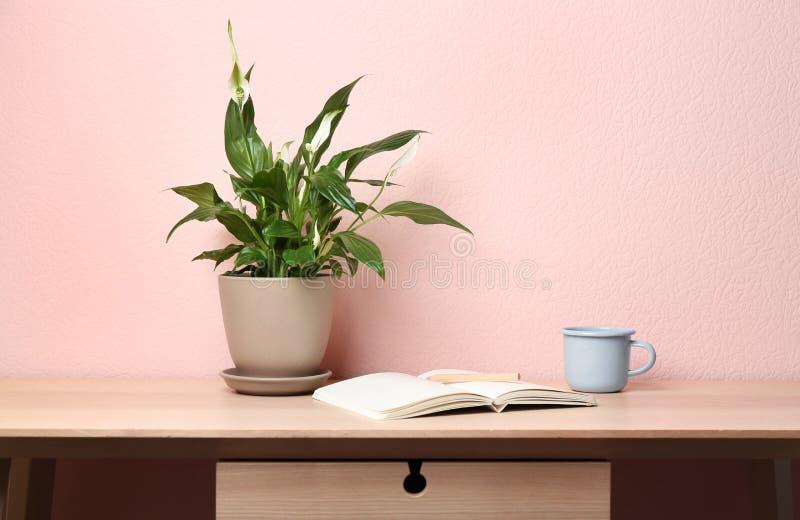 盆的和平百合植物、杯子和笔记本在木桌上在颜色墙壁附近 免版税库存照片