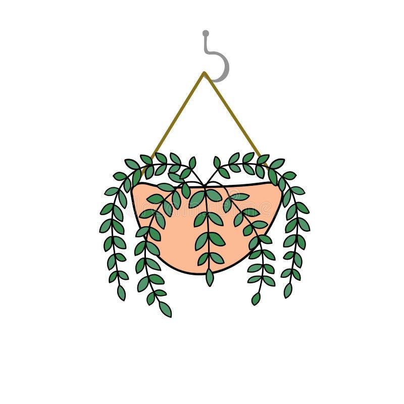 盆的唇膏藤植物手拉的乱画传染媒介图画在垂悬在勾子的桃红色罐的 室内装饰都市密林 向量例证