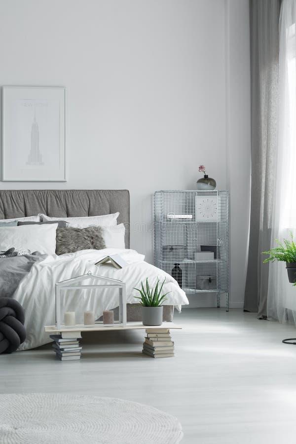 盆的芦荟在卧室 库存照片