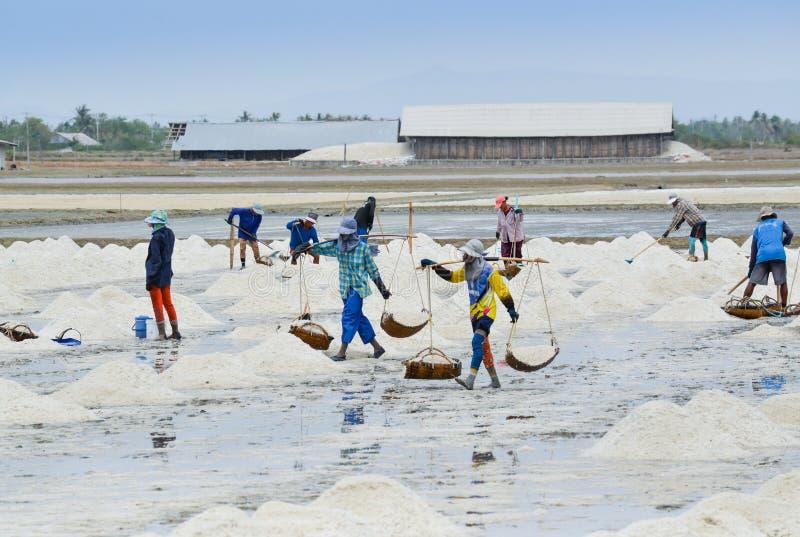 盐农场, Samut Sakhorn,泰国 免版税库存图片