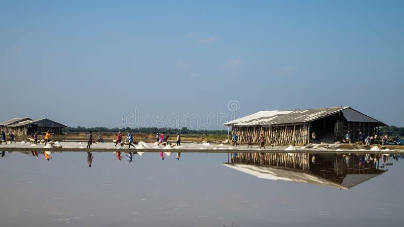 盐农场 图库摄影