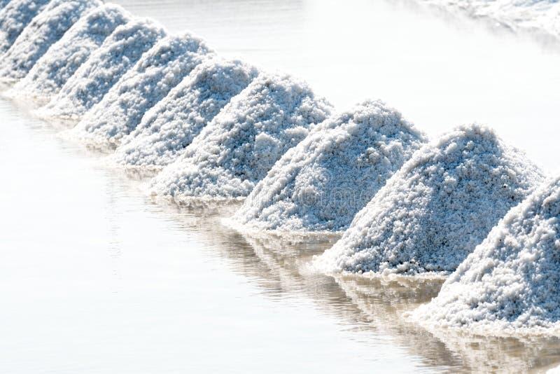 盐农场 库存照片