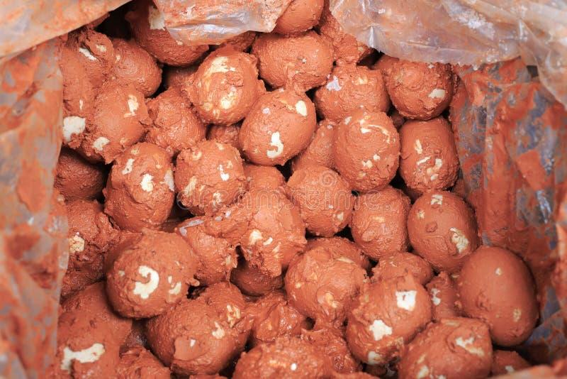 盐味的鸭子鸡蛋 免版税库存图片