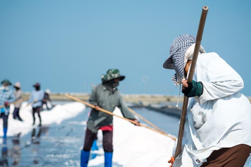 盐工作者 免版税库存图片