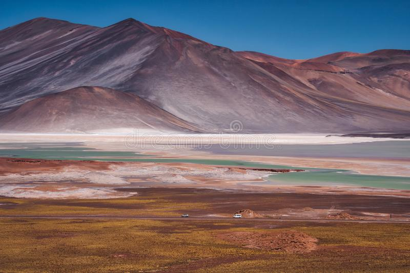 盐平底锅在撒拉族在智利人安地斯的de Talar 图库摄影