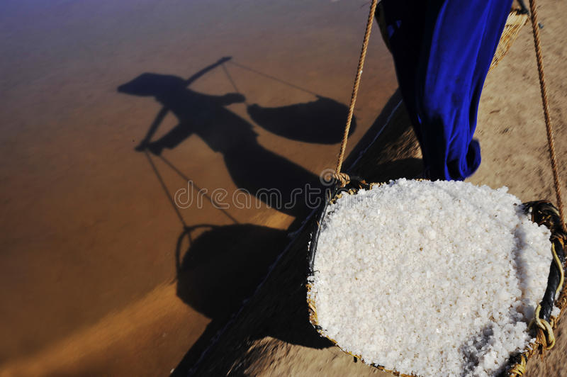 盐收获 库存照片