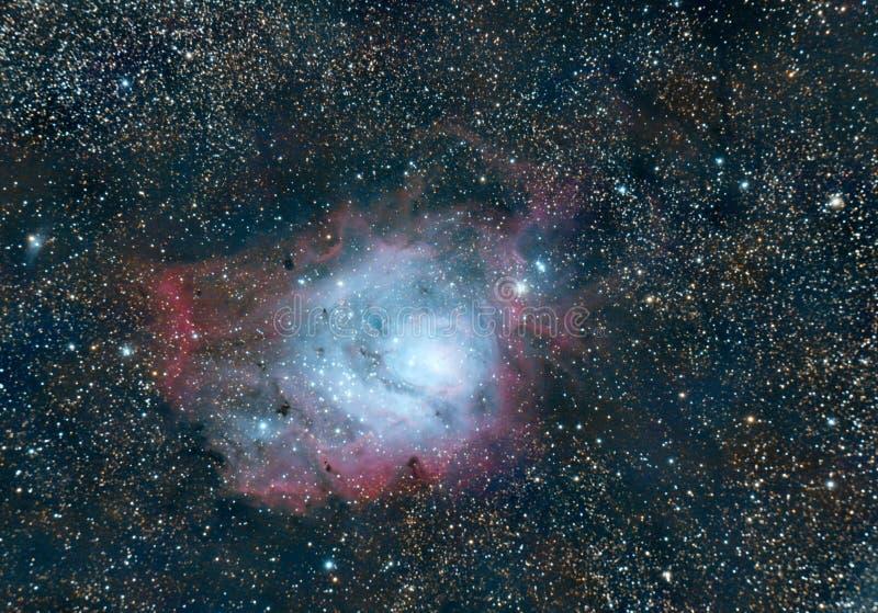 盐水湖星云 更加杂乱8 图库摄影