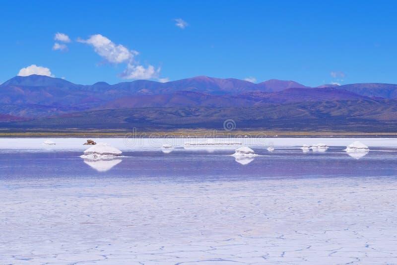 盐沼Salitral Grandes,大盐湖沙漠,在Susques附近,胡胡伊省,阿根廷 免版税库存照片