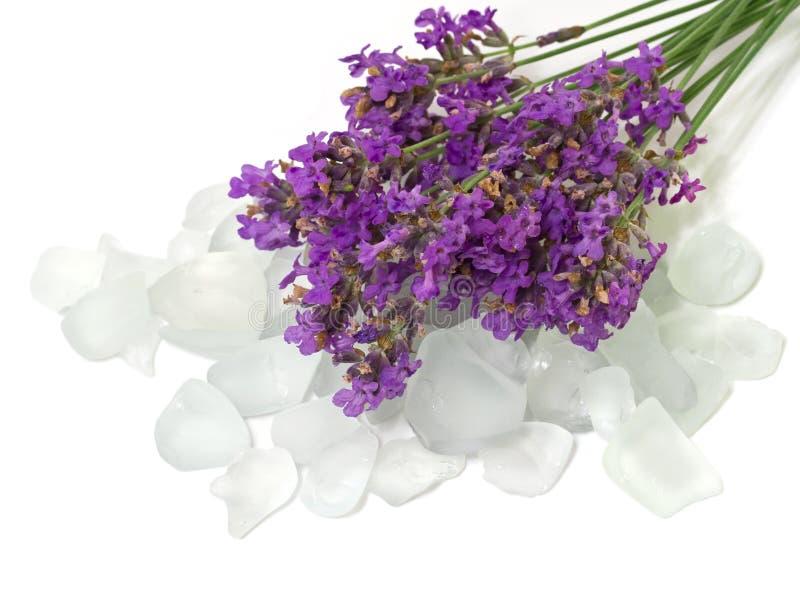 盐浴用淡紫色。 库存图片