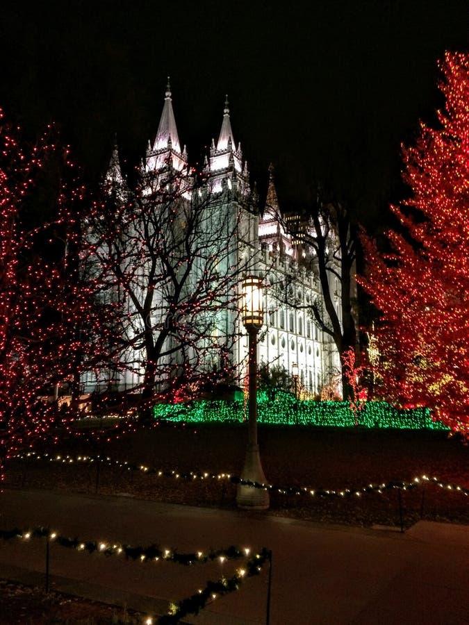 盐湖城LDS摩门教堂西部门面  库存图片