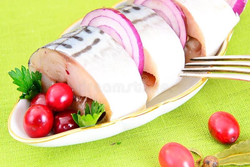 Download 盐用卤汁泡的鲭鱼用蔓越桔和 库存照片. 图片 包括有 材料, 健康, 水晶, 烹调, 饮料, 对象, 蔓越桔 - 62530500