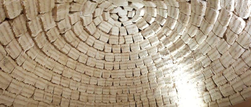 盐砖圆顶,乌尤尼盐沼,玻利维亚 免版税图库摄影
