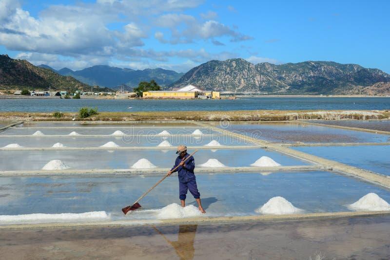 盐领域在芽庄市,越南 图库摄影
