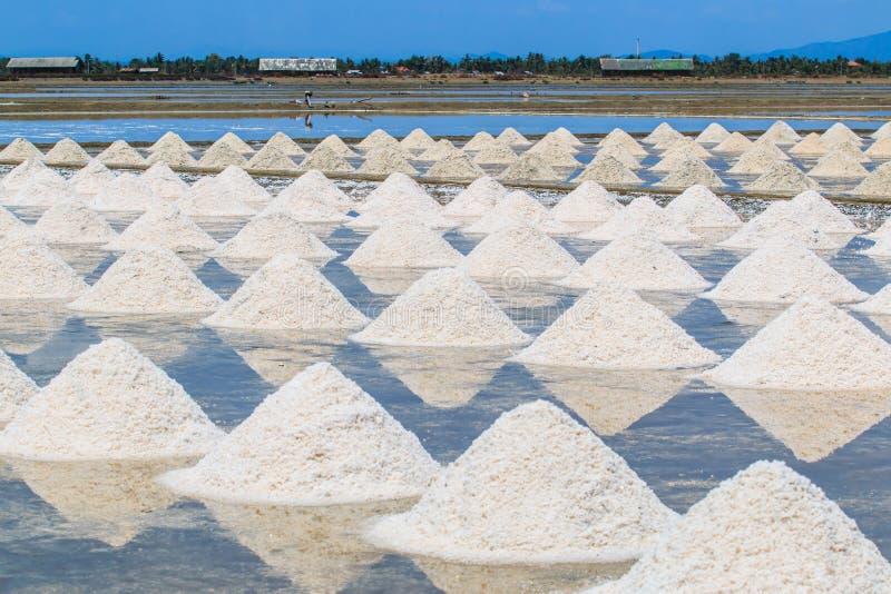 盐领域 库存图片