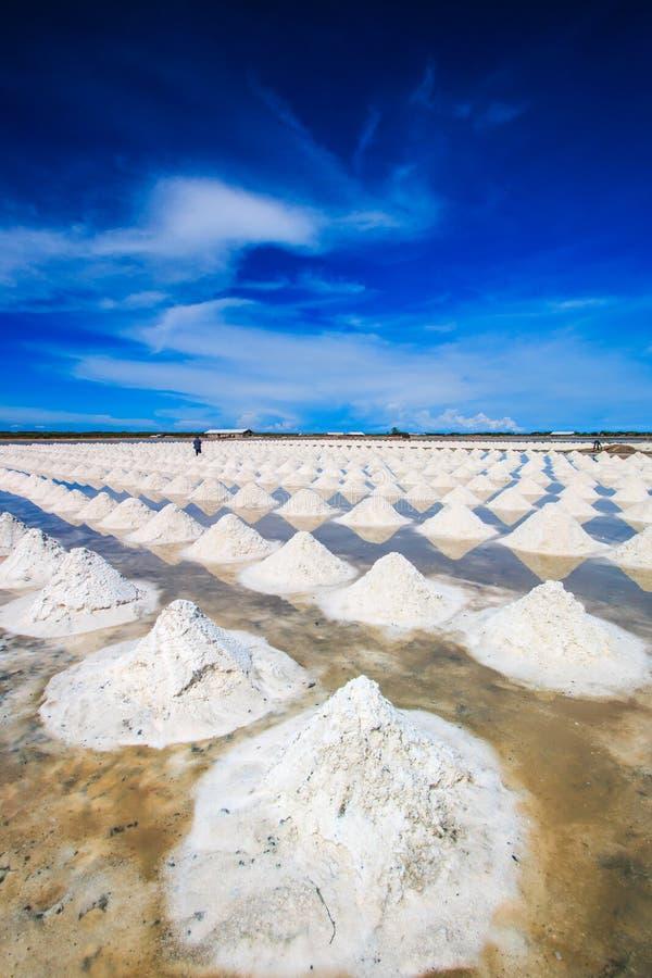 盐领域 免版税库存照片