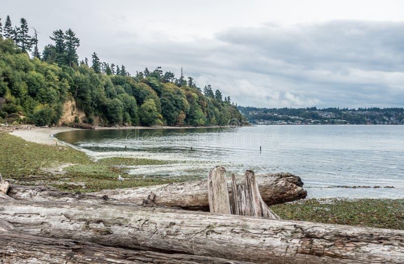 盐水国家公园的海岸线 库存图片