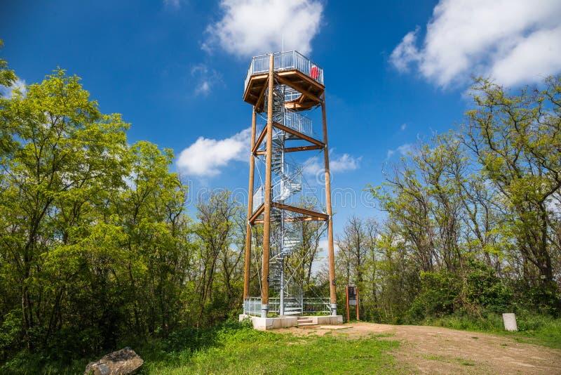监视塔,有金属步的木建筑螺旋形楼梯  观测塔的地方保持的 免版税库存照片