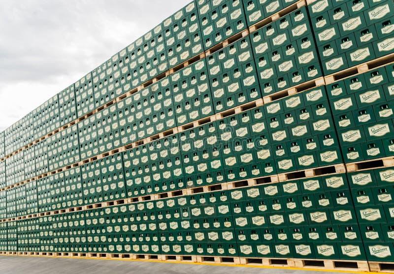 盒在室外存贮全部的被装瓶的啤酒 免版税库存图片
