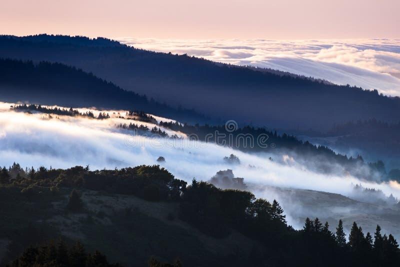 盖在圣克鲁斯山的雾和云彩日落视图谷;设置和桃红色天空照亮的海云彩 免版税库存照片