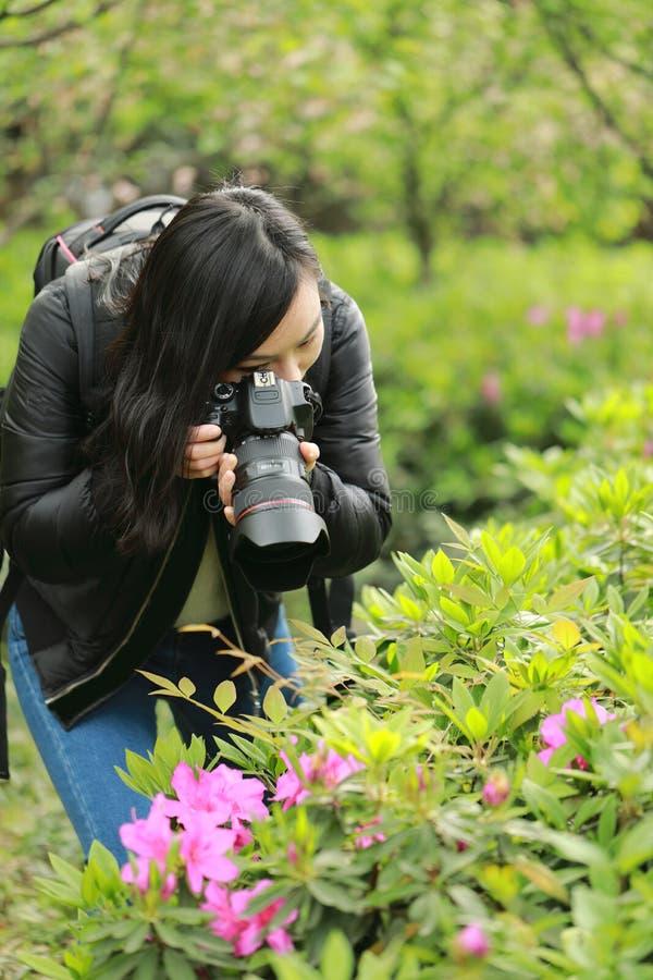 盖她的面孔的自然摄影师的画象用照相机在春天公园 免版税库存图片