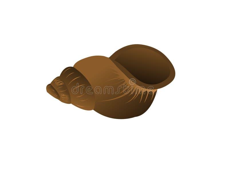 盖子蜗牛 免版税库存照片