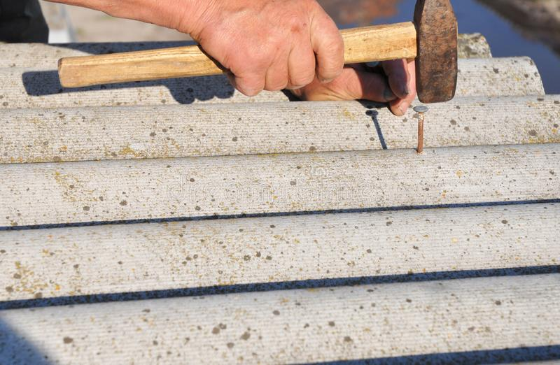盖屋顶的人替换损坏的石棉瓦片 修理石棉屋顶 钉牢屋顶木瓦 库存照片