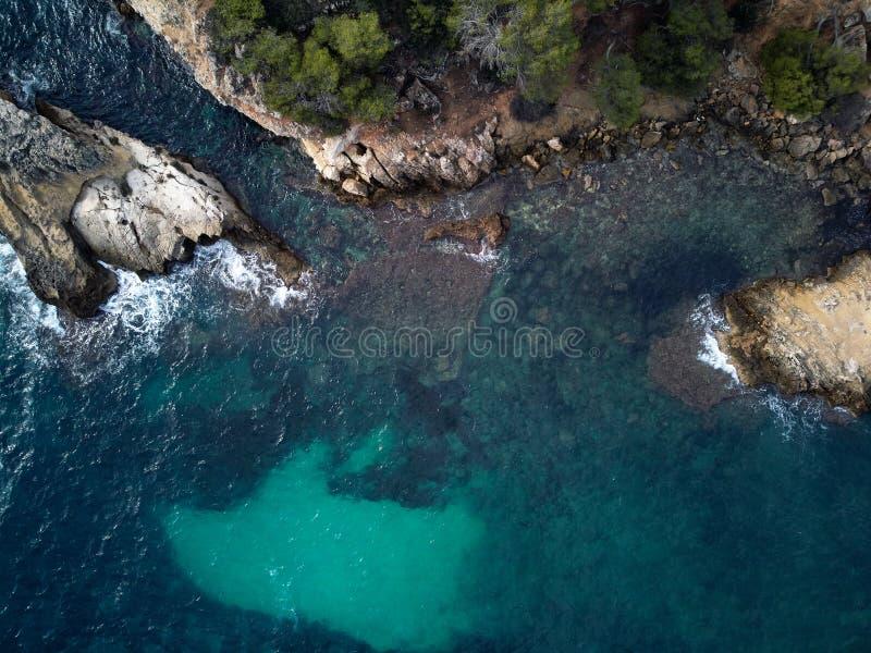 盖帽游隼科海滩在马略卡 西班牙 库存照片
